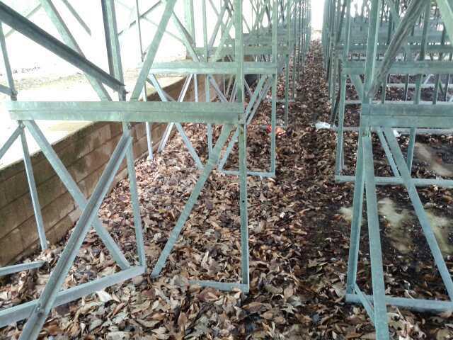 Outdoor Bleachers Leaves
